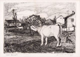 CINO BOZZETTI, The mooing cow, etching