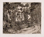 CINO BOZZETTI, The forest that looks to the outside, etching