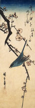 HIROSHIGE, Warbler on Plum Branch, woodcut