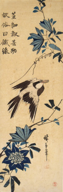 Hiroshige, oriole and clematis