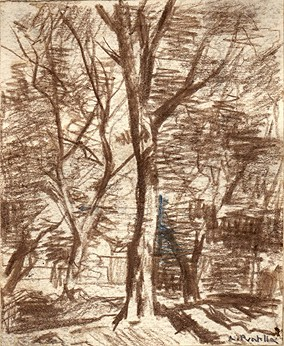 Attilio Pratella, a wooded landscape, chalk drawing